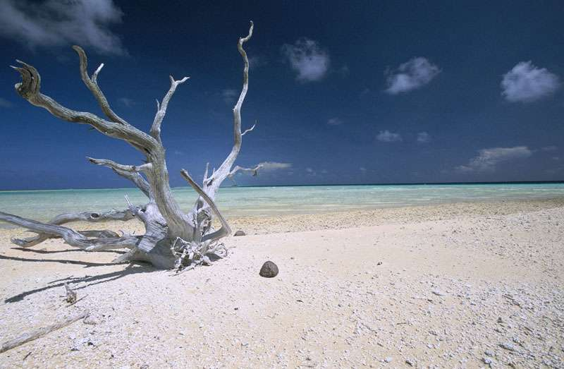 Plage aux Maldives. © Alexis Rosenfeld, reproduction interdite