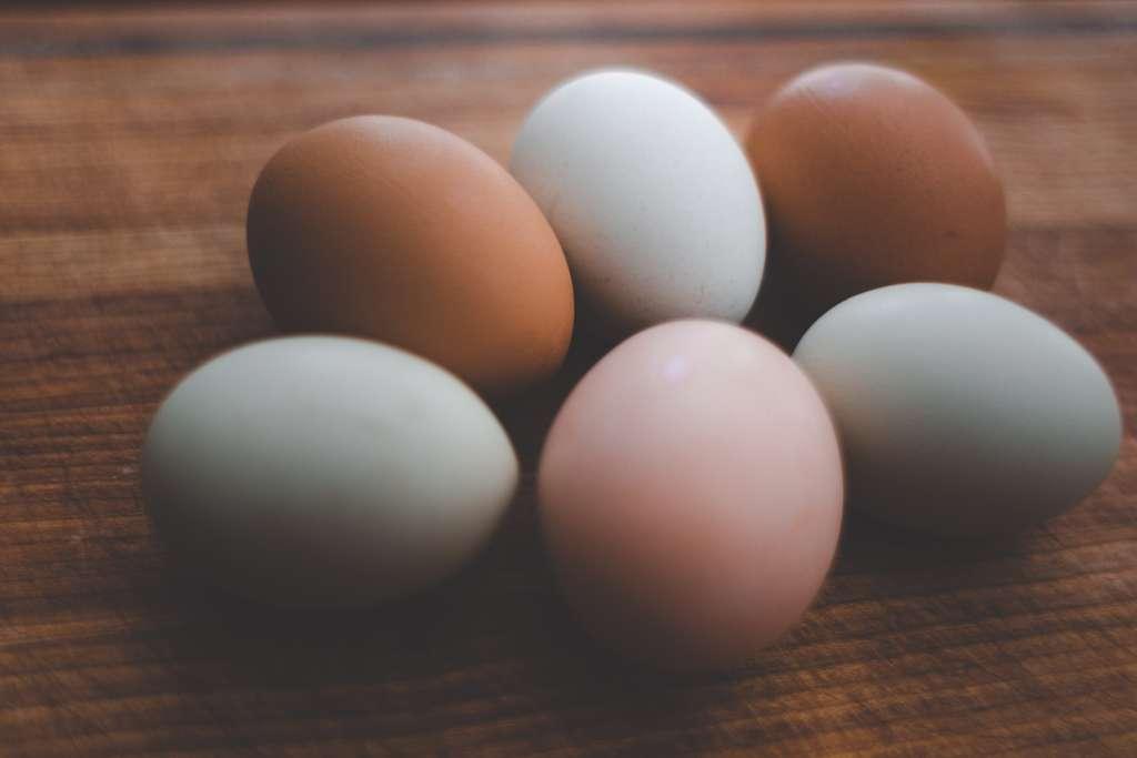 Les œufs n'aiment pas le micro-ondes, ils explosent très vite. © Danielle Macinnes, Unsplash