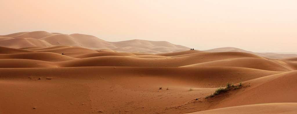 L'avancée des déserts semble irrémédiable. © GregMontani, Pixabay, DP