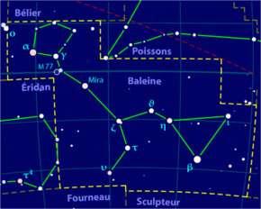 Constellation de la Baleine.