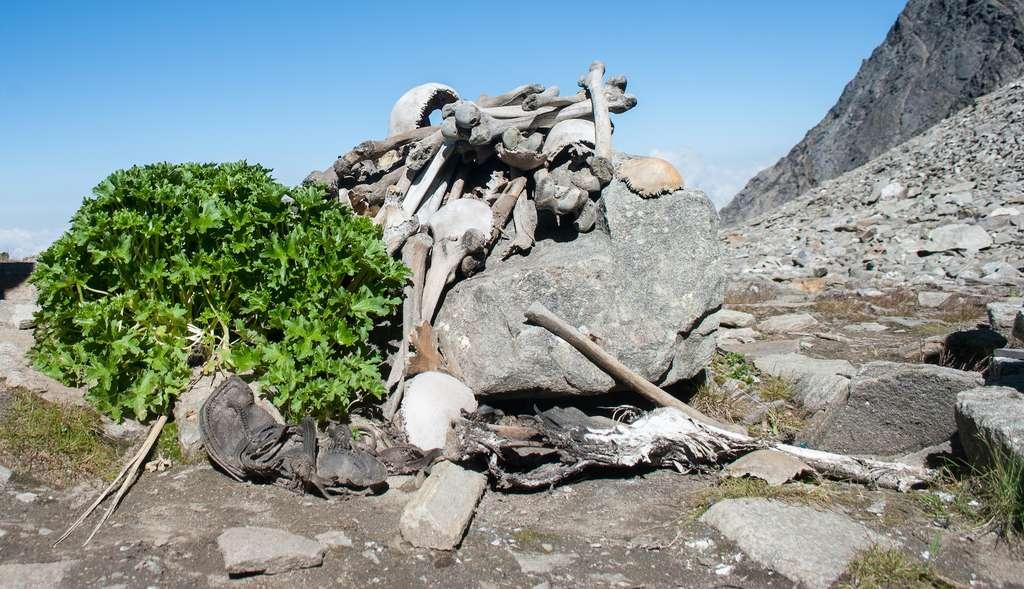 Des ossements humains au bord du lac de Roopkund. © Schwiki, Wikipedia, CC by-sa 4.0