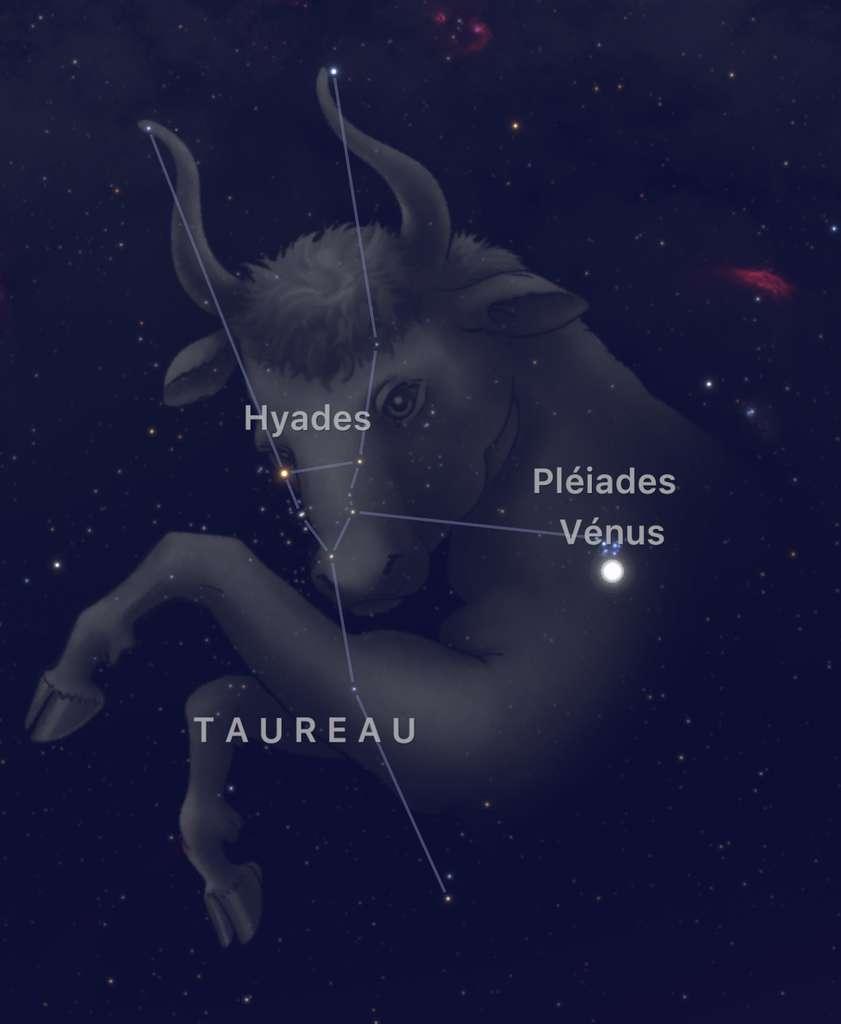 La grappe d'étoiles des Pléiades, qui brille dans le Taureau, reçoit début avril la visite de Vénus. Beau rendez-vous céleste à observer au-dessus de l'horizon ouest. © SkyGuide
