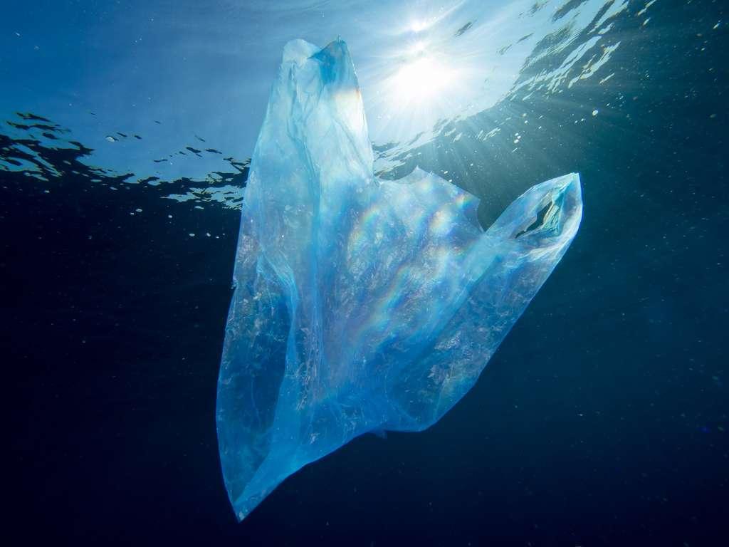 À partir du premier juillet 2016, les sacs plastiques seront interdits dans les magasins. Un pas pour limiter les pollutions. © magnusdeepbelow, Shutterstock