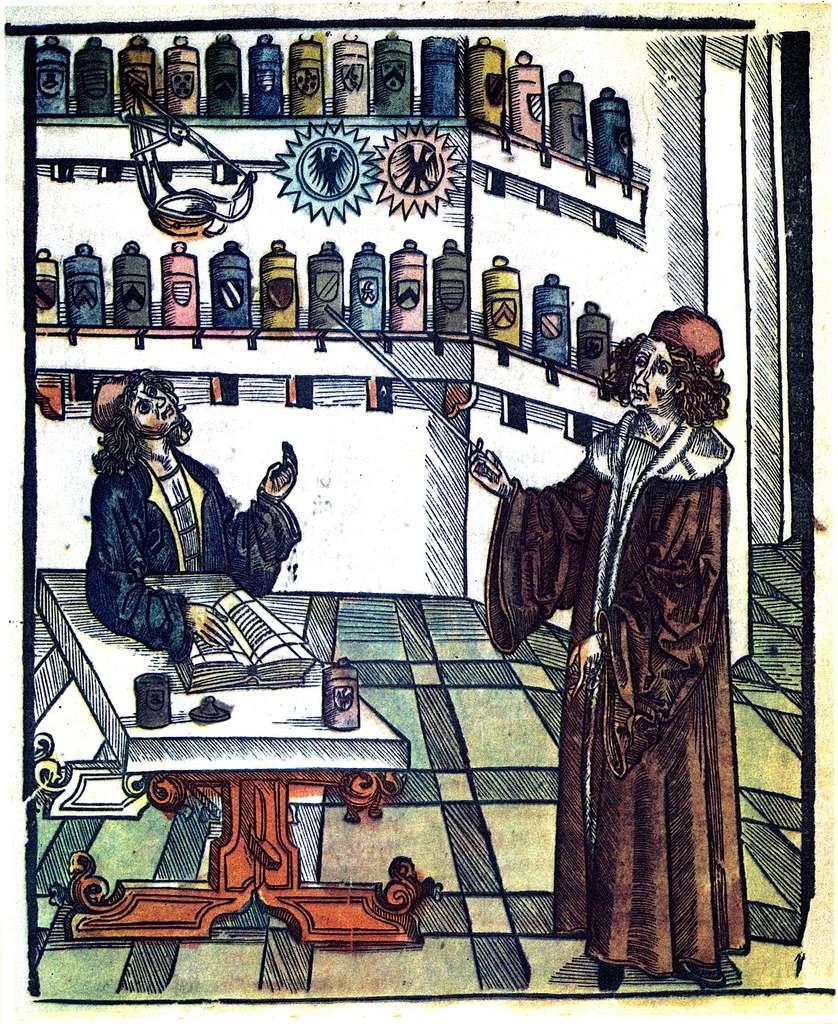 Représentation d'un maître apothicaire donnant la leçon à son apprenti, extrait de Das Buch der Gesundheit (le livre de la santé) par Hieronymus Brunschwig, édité à Strasbourg vers 1505. © Wikimedia Commons, domaine public