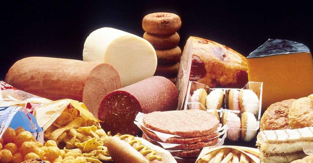 Une alimentation riche en graisses et sel peuvent être à la base d'une hypertension. © Photoshop Tofs, Pixabay, DP