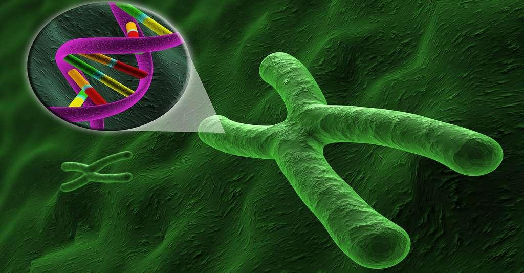 Le dépistage de la trisomie 21. © BioMedical - Shutterstock