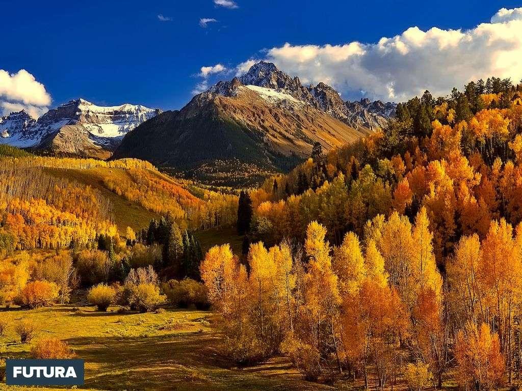 « L'automne est le printemps de l'hiver » Henri de Toulouse-Lautrec