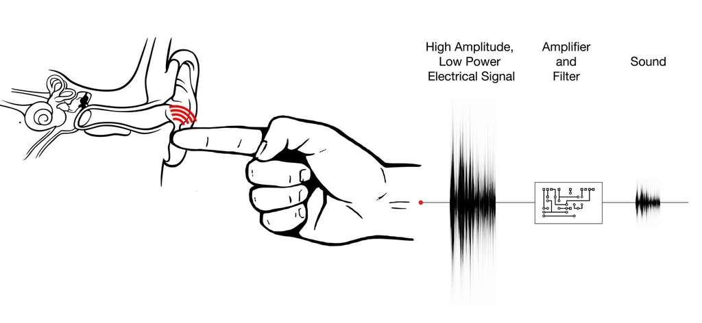 Le principe d'Ishin-Den-Shin commence par l'enregistrement d'un message à partir d'un microphone classique relié à un ordinateur. Le son est traité par un logiciel et un amplificateur (amplifier and filter) pour être transformé en un signal électrique (high amplitude, low power electrical signal) et inaudible qui est transmis via un fil métallique très fin placé sur le microphone. Lorsque la personne est en contact avec le fil, cela crée un champ électrostatique modulé à la surface de la peau. En touchant du doigt l'oreille de quelqu'un, le champ électrostatique provoque des microvibrations, transformant l'ensemble doigt-oreille en haut-parleur. © Disney Research