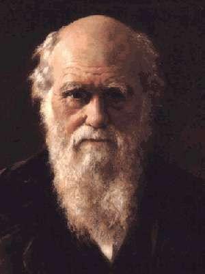 Selon Darwin, la musique a précédé le langage parlé dans l'évolution de l'Homme. © Citoyendesdeuxrives