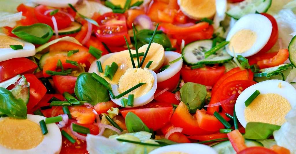 Au château de la Bourdaisière, vous pouvez découvrir des variétés de tomates du monde entier. © RitaE, CCO