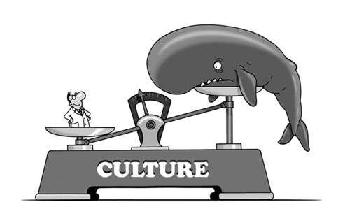 Lors d'un sondage, 45 % des personnes interrogées ont répondu que les animaux n'ont pas de culture. © Patrick Goulesque