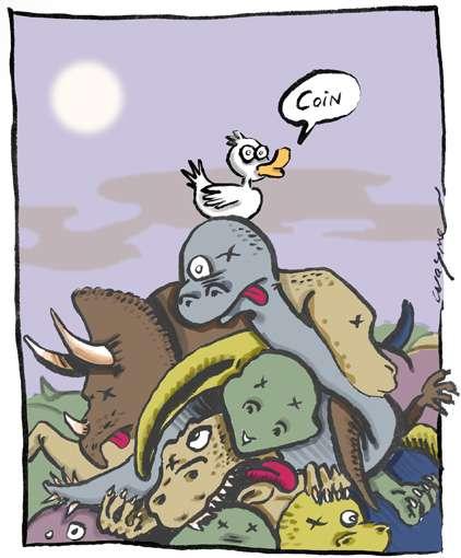 Après l'extinction des dinosaures, le canard était toujours vivant