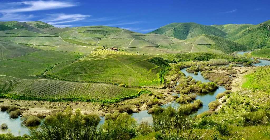 Vue de la vallée du Douro. © Duca696, Wikimedia commons, CC by-sa 3.0