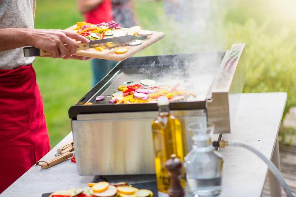 La plancha à gaz, l'allier indispensable pour une cuisine saine et sûre. © jackfrog, Adobe Stock