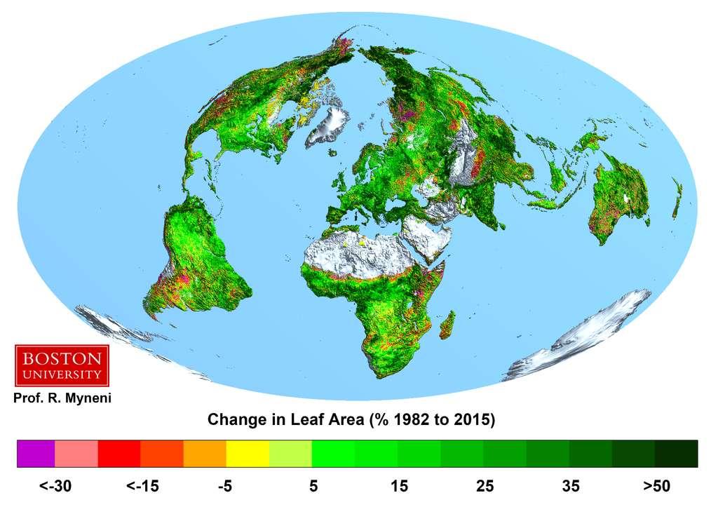 L'augmentation de la couverture végétale pour une surface donnée est montrée sur ce schéma. On voit qu'elle croit presque partout depuis une trentaine d'années. © Boston University