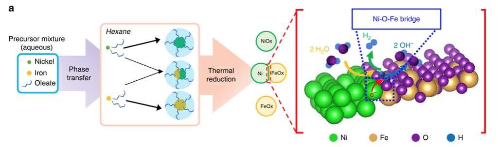 Pour produire de l'hydrogène à partir de l'électrolyse de l'eau, des chercheurs de l'UNSW Sydney (Australie) proposent de recourir à des catalyseurs sous forme de nanoparticules dites «Janus», des nanoparticules d'oxydes de fer et de nickel. © Bryan Suryanto, UNSW Sydney