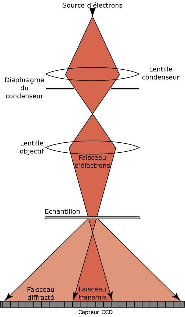 Dispositif expérimental utilisé lors de la ptychographie électronique. Les électrons sont focalisés sur l'échantillon par des lentilles électromagnétiques. Ensuite, contrairement à un microscope à transmission classique, il n'y a pas de lentille pour former une image. Les spots d'illumination sur les échantillons mesurent 20 à 40 nm de diamètre. © Adapté de Humphry et al. 2012, Nature Communications