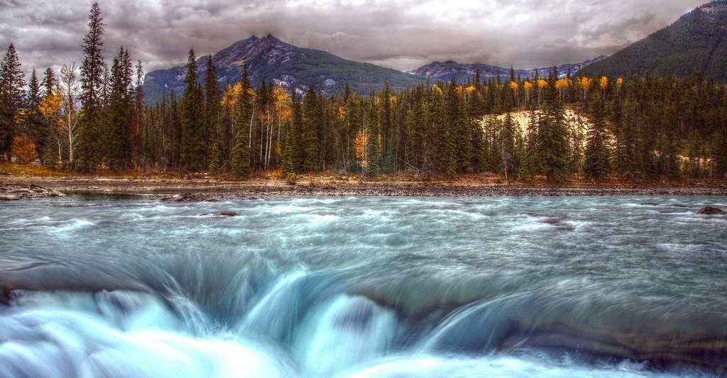 Les chutes Athabasca sont des chutes d'eau situées dans le parc national de Jasper, au Canada. © PiConsti, CC by-sa 2.0