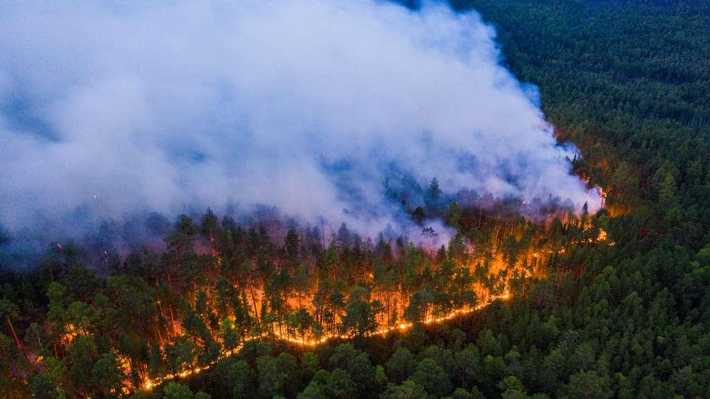 Le feu alimenté par plusieurs départs de foyers s'étend rapidement sur un sol très sec. © Greenpeace