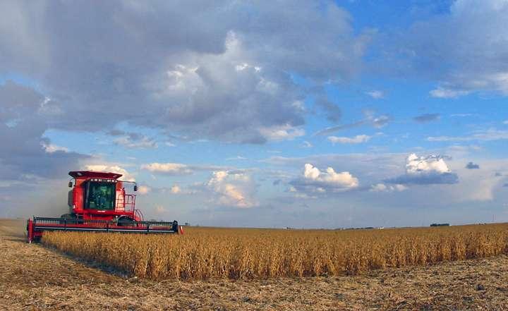 Pour augmenter la productivité, les machines agricoles sont devenues des géants lancés à l'assaut de centaines d'hectares. Impossible de les utiliser dans de petites parcelles. © tlindenbaum-flickr-CC BY-ND 2.0