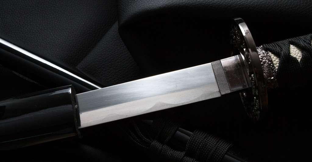 Épée en fer. © Loginovworkshop, Shutterstock