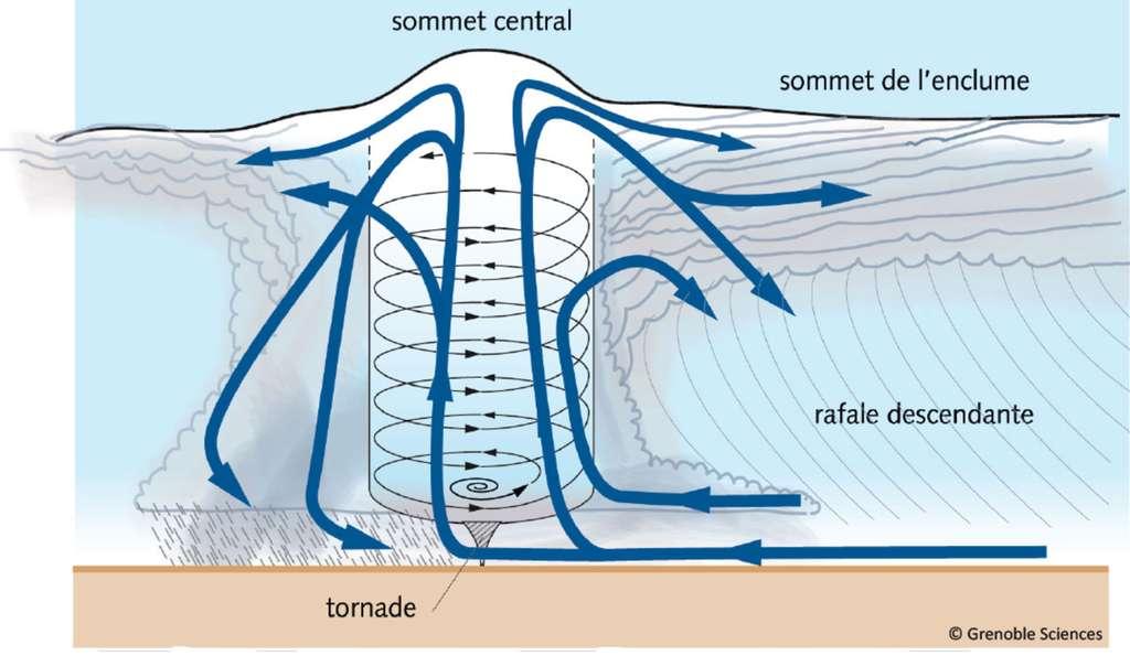 Organisation interne d'une cellule orageuse raccordée au sol par une tornade. Même si les échelles ne sont pas rigoureusement respectées, noter la petite taille de la tornade (hachures grises) par rapport à celle des courants ascendant et tournant (couleur bleue et pâle). La longueur de la tornade peut être de 10 à 100 m, l'épaisseur totale de la masse nuageuse de 5.000 m. Le diamètre de la tornade peut être de 2 à 10 m, alors que celui du courant ascendant peut atteindre 100 m. © Grenoble Sciences