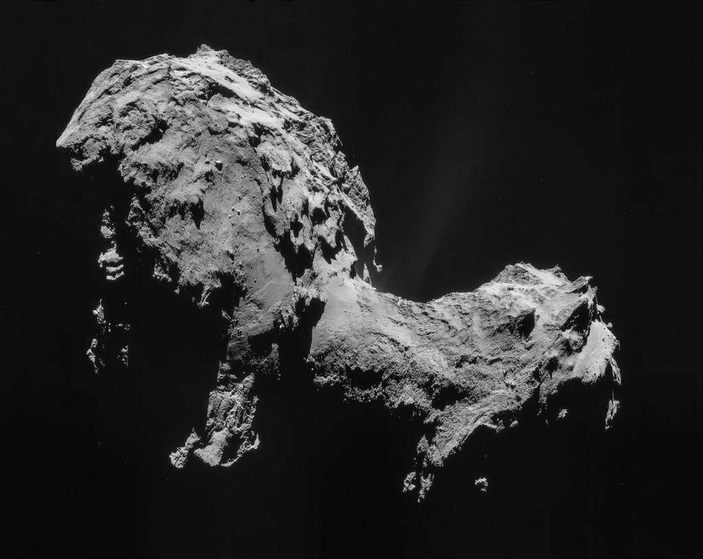 Le noyau cométaire de la comète Tchouri, de couleur très sombre, est de forme bilobée qui, pour certains, évoque un canard. © ESA/Rosetta/NAVCAM, CC BY-SA IGO 3.0