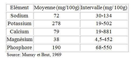 Quelques minéraux présents dans le muscle du poisson. © Murray et Brut, 1969