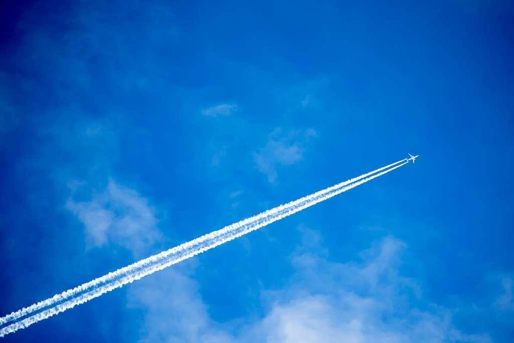 Un tiers des lignes aériennes ont disparu en 2020. © Sandor Jackal, Adobe Stock