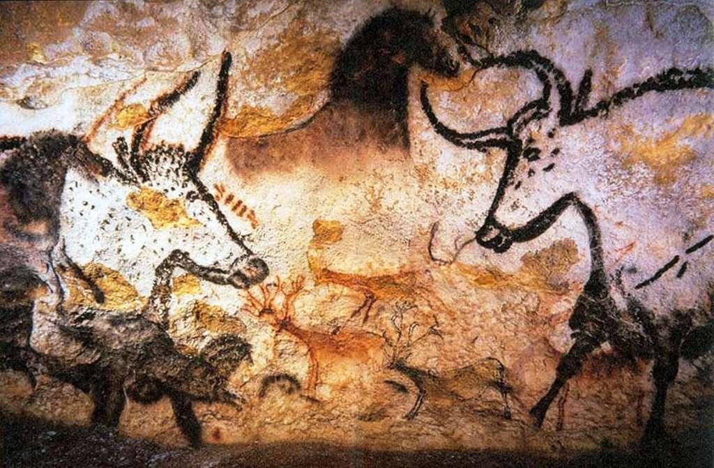 Les peintures rupestres de Lascaux montrent clairement des aurochs, les ancêtres des vaches actuelles. On peut aussi y trouver des bisons. © cc by sa 3.0, Prof saxx
