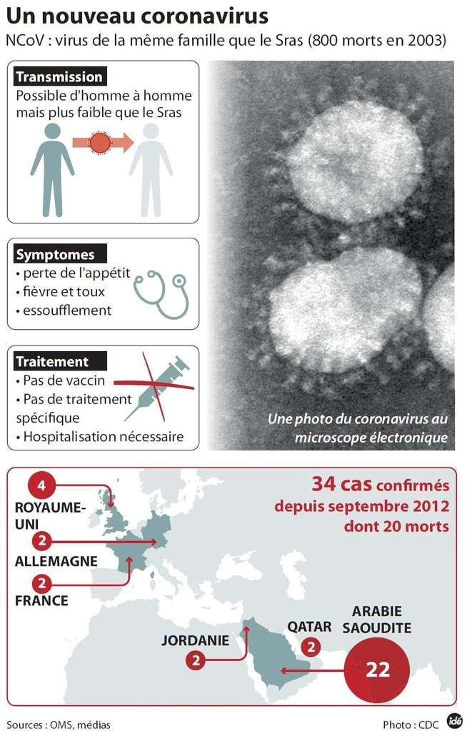 Apparu au Moyen-Orient et inconnu avant septembre 2012, le coronavirus, ou NCoV, a voyagé jusqu'en Europe. Dans les pays touchés, la lutte s'organise car ce virus, proche de celui du Sras, paraît dangereux. © Idé