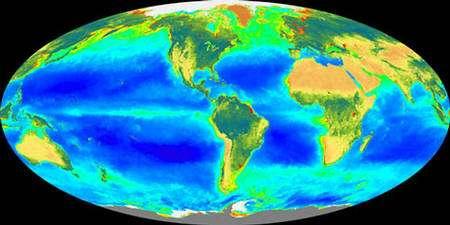 Productivité primaire des océans.