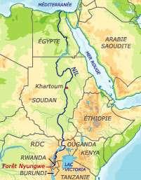 La source la plus lointaine du Nil est située dans la forêt de Nyungwe, au Rwanda (Courtesy of Bourgoing/Géoatlas/RFI)