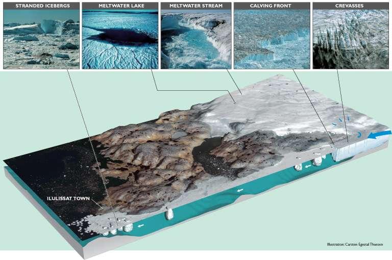 Le fjord glacé d'Ilulissat et le flux de glace. La flèche à droite de l'image indique la zone de crevasses du glacier Jakobshavn Isbræ. Au bout de la langue de glace se trouve le front du glacier. Dans cette zone, le vêlage génère les icebergs (calving front en photo). Les icebergs continuent leur chemin jusqu'à la ville d'Ilulissat (Ilulissat town). Certains blocs de glace s'échoueront ici (stranded icebergs) et d'autres se retrouveront dans l'océan. © Carsten Egestal Thuesen