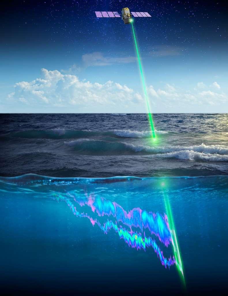Les données recueillies par le satellite Calipso servent aussi d'indicateur du nombre de poissons présents dans les eaux. Les petits animaux marins migrateurs, en effet, servent de nourriture aux poissons qui vivent dans les eaux profondes. © Timothy Marvel, Nasa