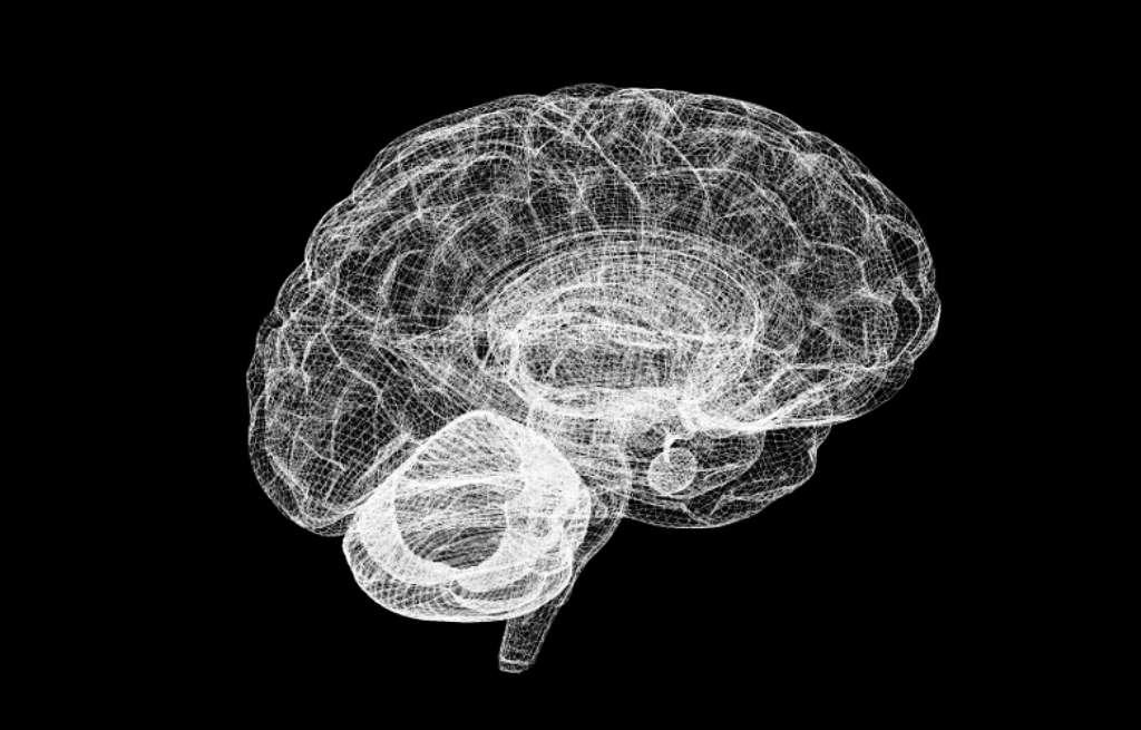 Les maladies d'origine neurologique comme celles d'Alzheimer ou de Parkinson vont devenir de plus en plus répandues dans une population vieillissante. Simuler de façon réaliste un cerveau sur ordinateur devrait permettre la mise au point de nouveaux traitements d'ici une décennie. © Human Brain Project
