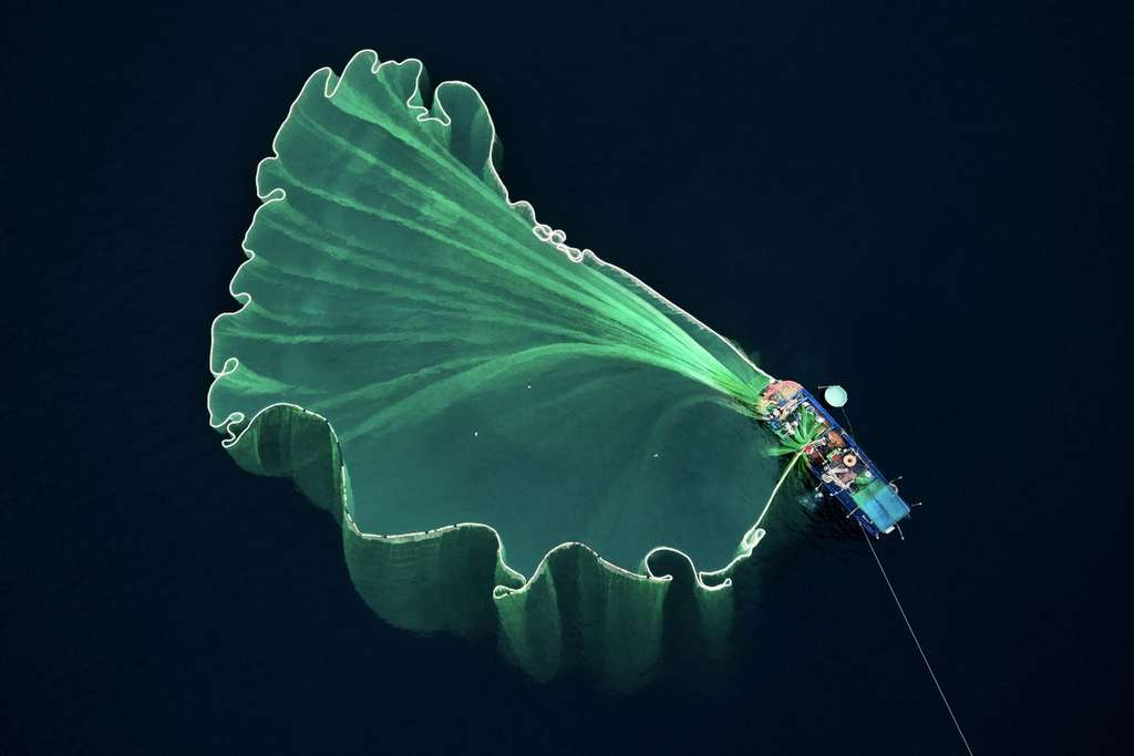 Filets de pêche vus par drone, Vietnam. © Trung Pham, Dronestagram