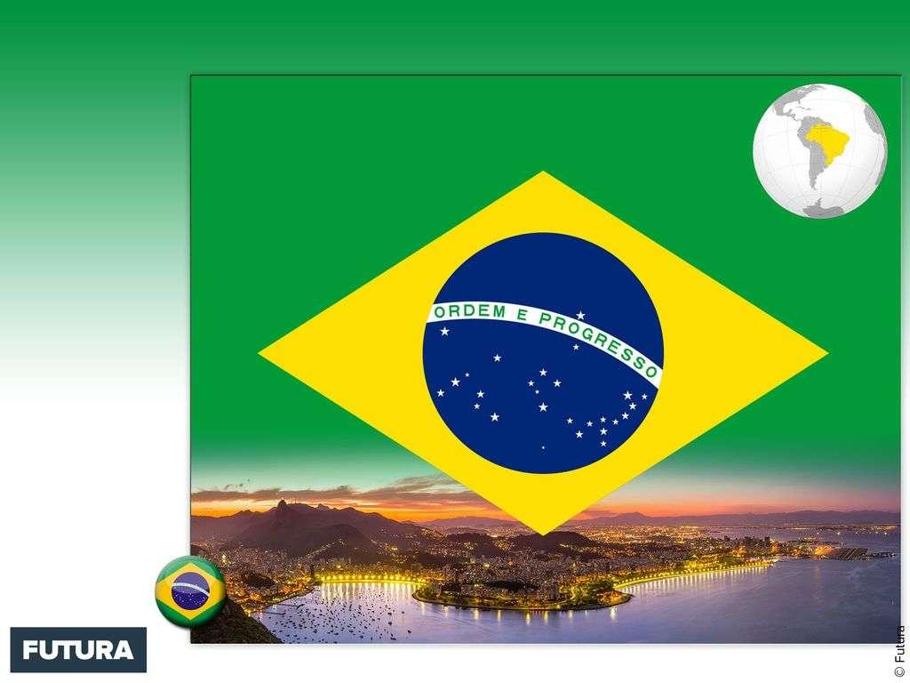 Drapeau : Brésil