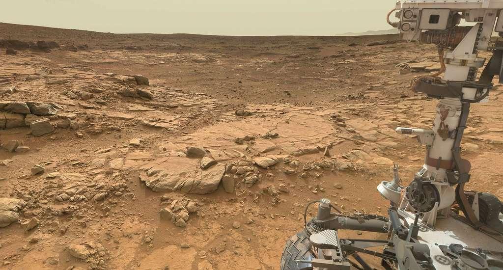 Le sol du cratère Gale, qui fut autrefois un lac, photographié par le rover Curiosity. © Nasa