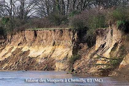 Falaise des Moquets à Chemilly, 03 © MC Reproduction interdite sans autorisation de l'auteur