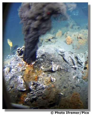 La dorsale du Pacifique oriental. © Ifremer/Pico