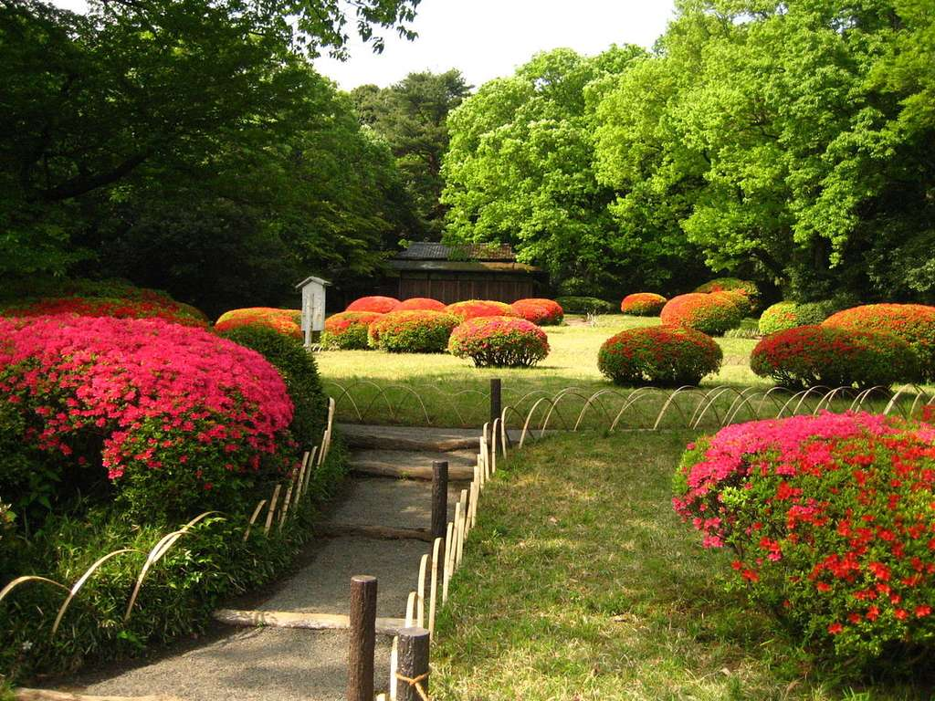 Meiji Shrine Inner Garden in Shibuya, Tokyo © Brian Adler, Domaine public