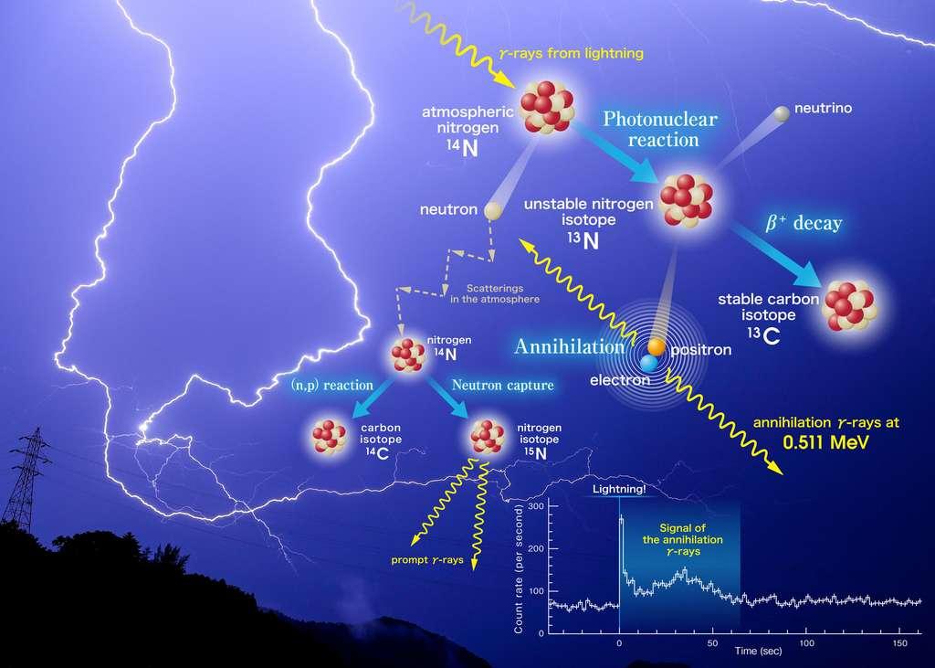 Schéma des différentes réactions nucléaires induites par les électrons accélérés dans les orages. © Teruaki Enoto, université de Kyoto