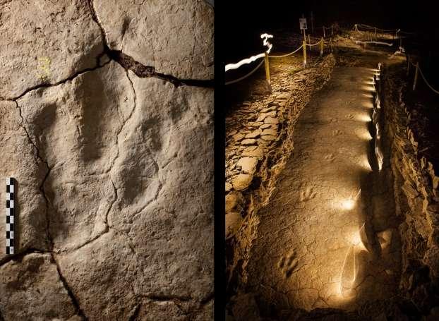 Empreinte et portion de la piste de théropode. © P. Dumas