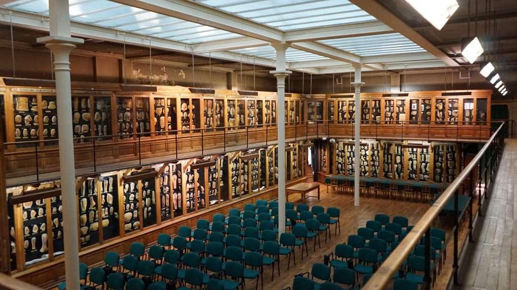 Le Musée des Moulages rénové à l'hôpital Saint-Louis. © Courtesy of APHP