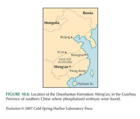 Localisation de la formation Doushantuo près de Weng'an dans la province de Guizhou.