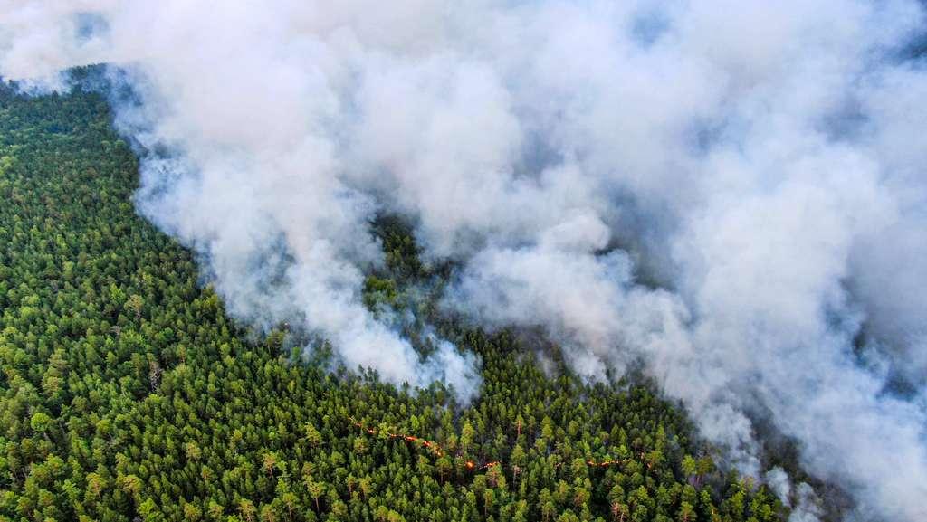 Les fumées relâchent d'importantes quantités de suie et de CO2. © Greenpeace