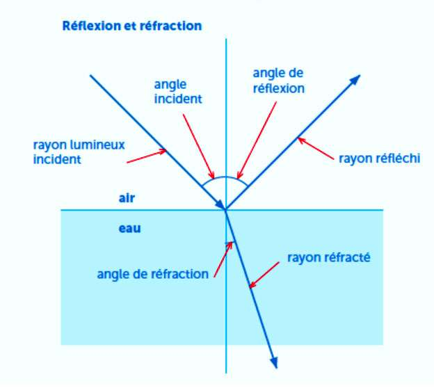 La cassure apparente d'un objet dans l'eau s'explique par le phénomène de réfraction de la lumière. © Le Pommier
