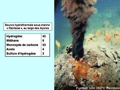 Les sources hydrothermales sont peut-être à l'origine de la vie sur Terre. © DR