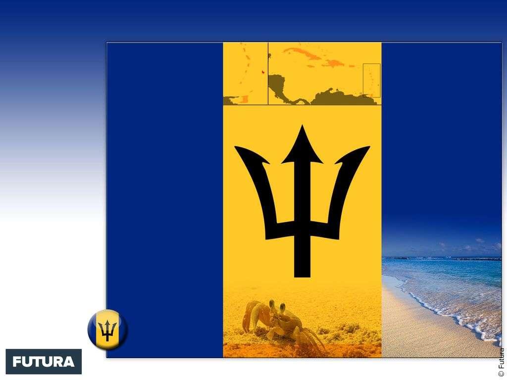 Drapeau : Barbade